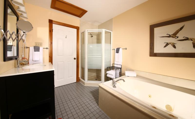 Designer Suite 201 Bathroom
